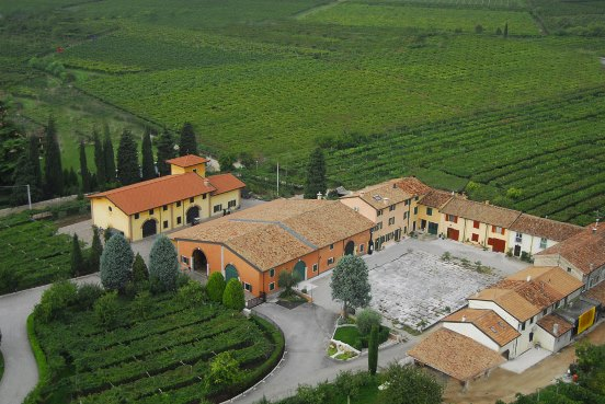 http://www.clubamarone.se/wp-content/uploads/2014/10/brunelli-wineyard.jpg