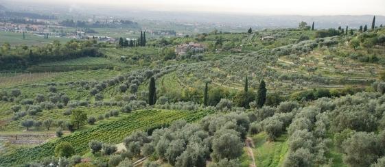 https://www.clubamarone.se/wp-content/uploads/2014/11/panorama-costa-degli-olivi.jpg